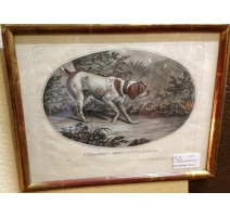 "Engraving ""The spaniel stopping a pheasant"""