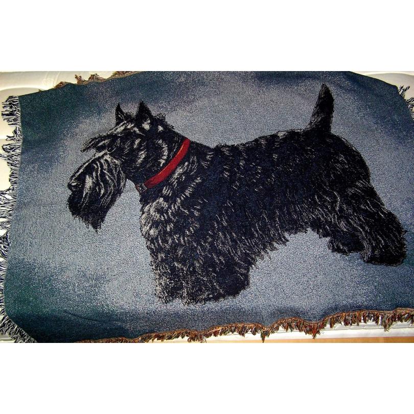 plaid scottish coloris bleu marine sur moinat sa antiquit s d coration. Black Bedroom Furniture Sets. Home Design Ideas