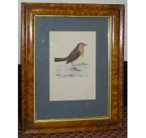 """Gravure sur papier """"Oiseau,"""