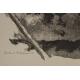 "Gravure ""Hermine"", signée Robert HAINARD"