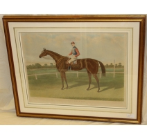 """English engraving race horse """"Daughter of the air"""""""