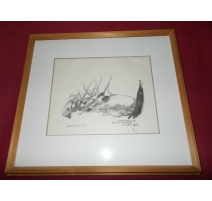 "Engraving ""the boar-sow and piglets"" signed HAINARD"