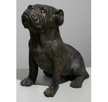 Bronze Bulldog