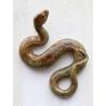 Serpent en faïence