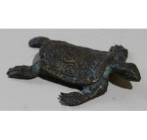 Petite tortue plate en bronze