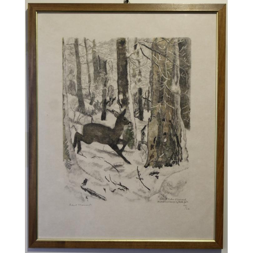 """Gravure """"Forêt givrée et chevrette"""" signée HAINARD"""