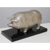 Cochon en bronze argenté, socle noir