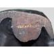 "Bronze ""Marcassin"" signé Robert HAINARD 14/25"