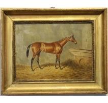 Tableau cheval brun signé WE TURNER