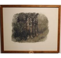 "Gravure ""Couple de loups"" signée Robert HAINARD"