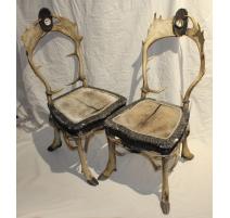 Paire de chaises en cornes