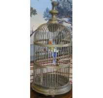 Cage à oiseaux en fer doré avec perroquet