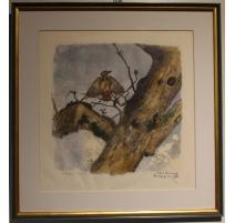 "Gravure ""Pic épeiche"" signée Robert HAINARD"