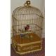 Cage oiseaux chanteurs, Reuge