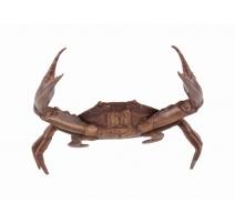 Crabe en bronze