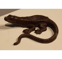 Lézard queue courbe brun en bronze