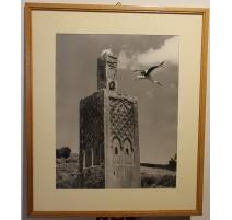 """Photographie """"Minaret de Chellah et cigogne"""""""