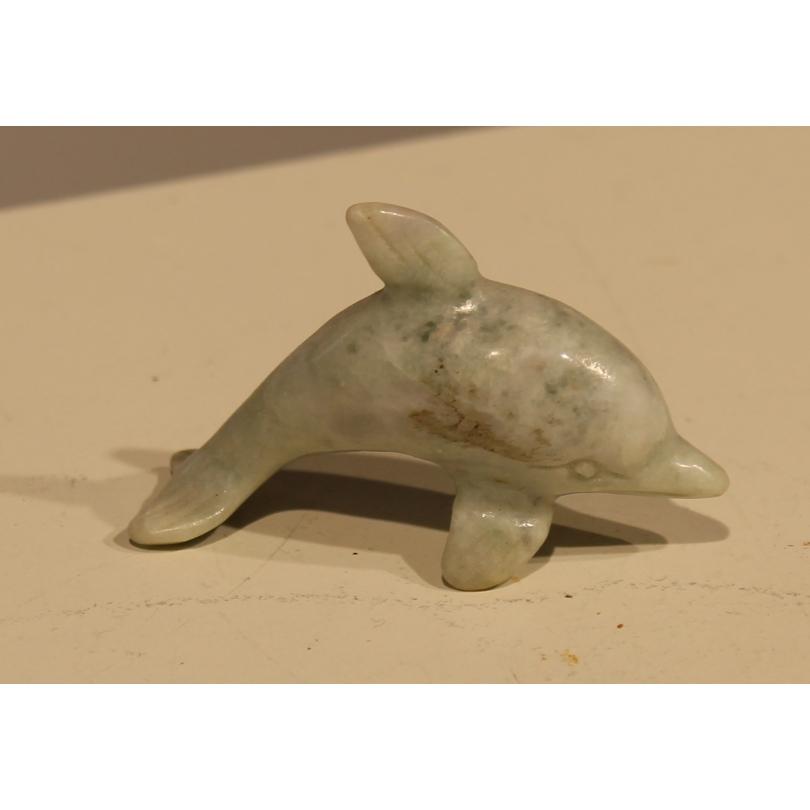 海豚在硬石蓝色的