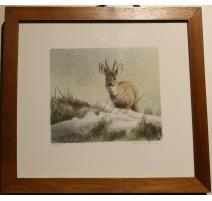 """Engraved """"Deer"""", signed RHYMES"""