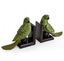对书挡绿鹦鹉