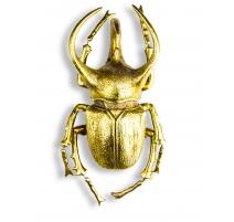 """墙上的装饰""""犀牛的甲虫""""黄金"""