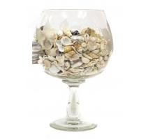 Coupe en verre gravé remplie de coquillages