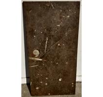 Plateau rectangulaire en marbre Fossile Etrusco