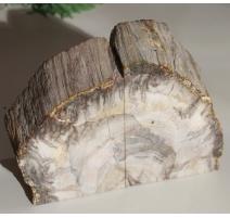 Paire de serre-livres en bois fossilisé