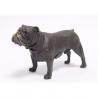 Petit Bulldog anglais en bronze