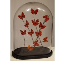 Globe de papillons rouges