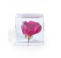 Presse-papier rose dans un bloc en acrylique