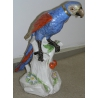 Figure animale  Perroquet .