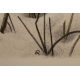 """Gravure """"Biche en hiver"""" signée RIME"""