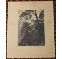 """Photographie """"Chapelle"""" signée A. RYFFEL 1911"""